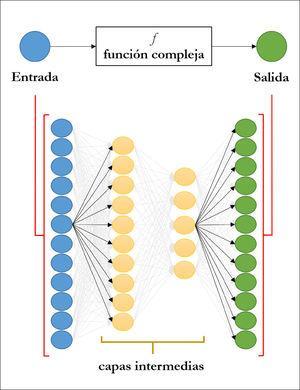 Esquema de una red neuronal profunda El objetivo es modelar la relación, que puede ser muy compleja, entre variables de entrada y de salida. Para ello, las componentes de la variable de entrada, que pueden ser las intensidades de los pixeles de una imagen, son utilizados como nodos de entrada. Cada nodo utiliza como entrada una combinación lineal del resto de los nodos de la capa anterior. La información se propaga a través de las capas intermedias hasta llegar a los nodos de salida. El número de capas y de nodos es determinado por el usuario. Los coeficientes de las combinaciones lineales son estimados a partir de datos.