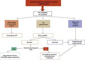 Propuesta de algoritmo de estudios y manejo de EH avanzada (Grado III/IV). LET (Limitación del Esfuerzo Terapéutico); TAC (Tomografia Axial Computarizada); EEG (Electroencéfalograma); (DTC) Doppler TransCraneano; (DVNO) medición de Diámetro de la Vaina del Nervio Óptico.