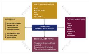 Patogenia de la Enfermedad inflamatoria intestinal pediátrica.