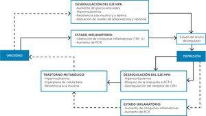 Mecanismos fisiopatológicos que relacionan la obesidad con la depresión13 HPA: Nivel hipotálamico-hipofisiario-suprarrenal.