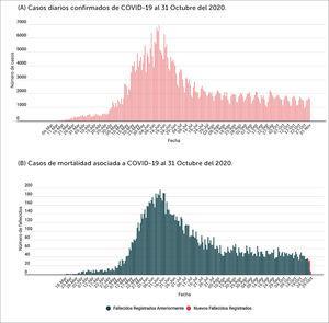 Chile. Secuencia epidemiológica temporal de casos Fuente Ministerio de Salud de Chile.