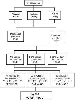 Scheme of specimen's distribution and procedures subjected.