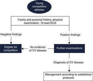 Proposed European Society of Cardiology screening protocol for young competitive athletes (adapted from 72). CV: cardiovascular; ECG: electrocardiogram.
