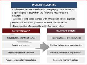 Pathophysiology-based approach to diuretic resistance.