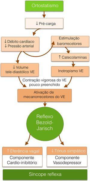 Fisiopatologia do reflexo de Bezold‐Jarisch como mecanismo da síncope reflexa. VE = Ventricular Esquerdo.