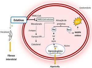 Mecanismo de ação das estatinas e o seu papel na fisiopatologia da MCH39,40 Legenda: Ap‐1‐ proteína ativadora‐1; Farnesil‐PP‐ farnesil‐pirofosfato; HMG‐CoA‐ 3‐hidroxi‐3‐metilglutaril coenzima A; MAPK‐ proteína cinase ativada por mitogénio; NADPH‐ nicotinamida‐adenina‐dinucleótido‐fosfato reduzida; ROS‐ espécies reativas de oxigénio.