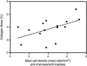 Correlation between collagen fibers and density of mast cells immunolabeled with anti-chymase and anti-tryptase antibodies. Linear regression fit=3.03+0.26. p=0.04.