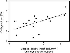 Correlation between collagen fibers and density of mast cells immunolabeled with anti-tryptase antibodies. Linear regression fit=2.96+0.21. p=0.02.