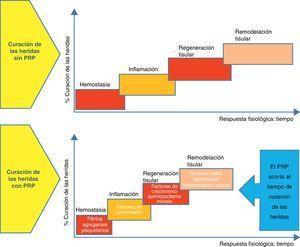 Diagrama esquemático del proceso de curación de las heridas en condiciones normales y de su aceleración cuando se aplica el preparado plasmático rico en plaquetas.