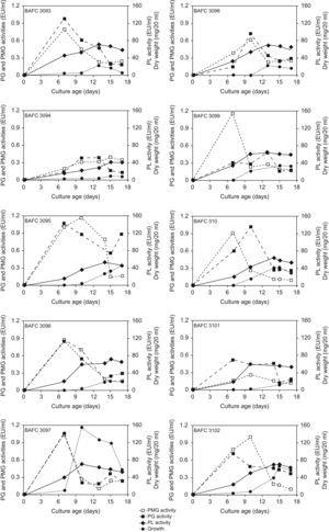 Kinetics of growth and in vitro pectinolytic enzyme production on a defined medium based on pectin as carbon source, by ten Argentinean pathogenic strains of C. truncatum, isolated from diseased soybean plants.