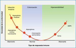 Enfermedades atribuidas a especies de Aspergillus en función de la respuesta inmunitaria del huésped. ABPA: aspergilosis broncopulmonar alérgica.