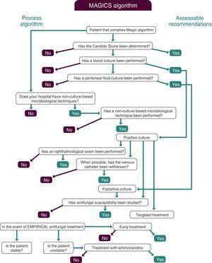 MAGIC algorithm for the diagnosis and treatment of invasive candidiasis.