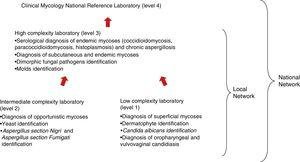 Level of complexity of the laboratories and organizational structure of the Mycology Network.