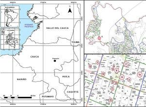 Geographical location of the city of Popayán (left) and the collecting sites (right). *In the upper right picture site number 1 is observed, on the lower right picture, sites 2–15 are observed, located mainly in the city center.