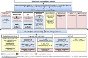Algoritmo de tratamiento óptimo de la mucormicosis en pacientes adultos en localizaciones geográficas con disponibilidad de todas las modalidades terapéuticas. Adaptada de Cornely et al.10.