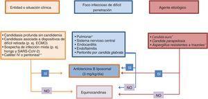 Algoritmo para establecer una terapia individualizada en el manejo de la IFI en el paciente crítico. ECMO: oxigenación por membrana extracorpórea. * Considerar tratamiento combinado con equinocandinas. ** Sellado del catéter con anfotericina B liposomal.