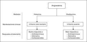 Esquema de los tipos principales de angioedema según el mediador químico responsable, las manifestaciones clínicas y la respuesta al tratamiento (elaboración propia).
