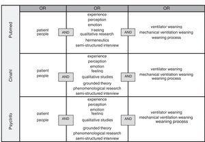 Estrategia de búsqueda en las diferentes bases de datos.