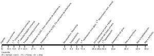 Cronograma de la evolución desde la ingesta hasta el alta domiciliaria.
