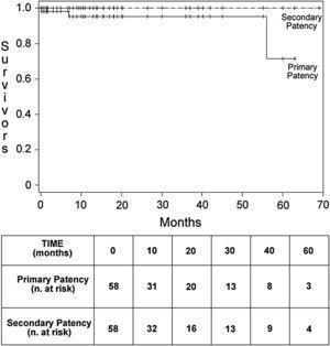 Gráfico de Kaplan-Meier de las tasas de permeabilidad primaria y secundaria de todos los pacientes. Months: meses; Primary Patency: permeabilidad primaria; Primary Patency (n. at risk): permeabilidad primaria (n.° en riesgo); Secondary Patency: permeabilidad secundaria; Secondary Patency (n. at risk): permeabilidad secundaria (n.° en riesgo); Survivors: supervivientes; TIME (months): tiempo (meses).
