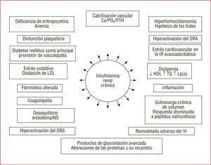 Insuficiencia renal crónica y su impacto en la fisiopatología cardiovascular. HDL: lipoproteínas de alta densidad; LDL: lipoproteínas de baja densidad; Lp(a): lipoproteína (a); PTH: paratirina; SNS: sistema nervioso simpático; SRA sistema renina-angiotensina; TG: triglicéridos; VI: ventrículo izquierdo.