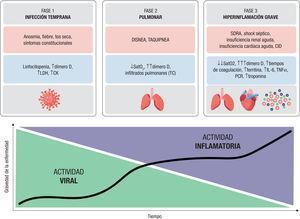 Fases de la COVID-19. Se muestran las 3 fases de la infección con sus síntomas y los marcadores de laboratorio y de imagen característicos de cada etapa. En la gráfica se pone de manifiesto la relación entre estas fases y la actividad viral e inflamatoria. Figura de elaboracion propia. CID: ; CK: creatincinasa; IL: interleucina; LDH. lactato deshidrogenasa; PCR: proteina C reactiva; SatO2: síndrome arterial de oxigeno; SDRA: síndrome de dificultad respiratoria del adulto; T': tiempos; TC: tomografía computarizada; TNF: factor de necrosis tumoral.