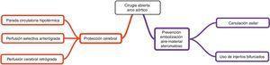 Cirugía abierta del arco aórtico. Estrategias de neuroprotección.