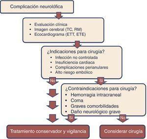Algoritmo de tratamiento de las complicaciones neurológicas en la endocarditis. TC: tomografía computarizada&#59; ETE: ecocardiografía transesofágica&#59; ETT: ecocardiografía transtorácica&#59; RM: resonancia magnética.