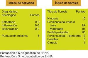 Diagnóstico histológico de hígado graso no alcohólico.