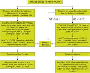 Algoritmo de actuación ante un paciente con hígado graso no alcohólico.