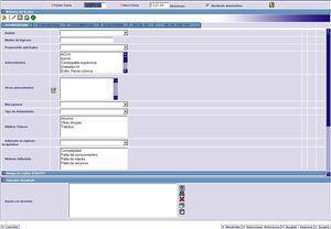Vista del formulario «Valoración Enfermera por Patrones».