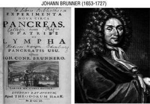Johan Brunner (1653-1727) observed extreme thirst and polyuria in pancreatectomized dogs (1709).