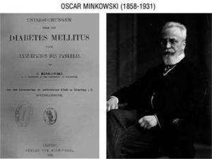 Oskar Minkowski (1858-1931) confirmed that total pancreatectomy induced diabetes in the dog (1890).