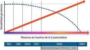 Evolución de la variabilidad glucémica en función de la funcionalidad posprandial de la célula beta pancreática (reserva de insulina endógena). ADO: antidiabéticos orales&#59; DM1: diabetes mellitus tipo1&#59; DM2: diabetes mellitus tipo2&#59; GAA: glucemia alterada en ayunas&#59; IHC: intolerancia a los hidratos de carbono&#59; NG: normoglucemia&#59; SM: síndrome metabólico-resistencia a la insulina. De Borg et al.9, Madhu et al.10 y Kohnert et al.11.
