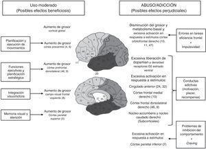 Implicaciones neurobiológicas de los videojuegos.