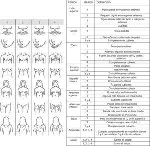 Graduación del hirsutismo según la clasificación de Ferriman y Gallwey.