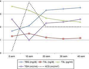 Esquema de evolución de los parámetros de función tiroidea durante la gestación. *Curva de hCG superpuesta.