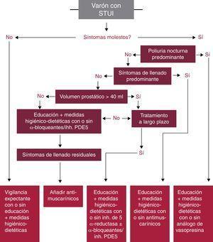 Algoritmo de tratamiento médico en varones con STUI sin indicación de cirugía. Adaptado de Gravas et al.5