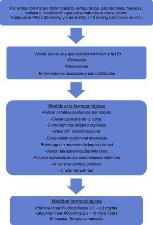 Algoritmo del tratamiento de los sujetos con hipotensión ortostática. HO: hipotensión ortostática; PAD: presión arterial diastólica; PAS: presión arterial sistólica.