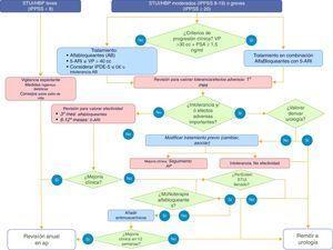 Algoritmo de decisión para tratamiento farmacológico y seguimiento clínico en varón con STUI/HBP.