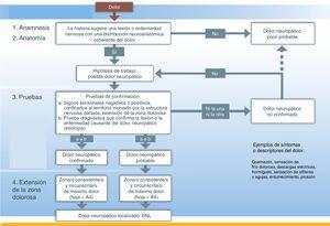 Herramienta de detección del dolor neuropático localizado.Fuente: adaptado de Treede et al.1.
