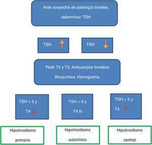 Algoritmo del hipotiroidismo.