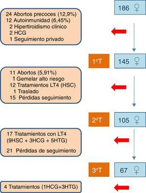 Gestantes incluidas por trimestre. HC: hipotiroidismo clínico; HSC: hipotiroidismo subclínico; HTG: hipotiroxinemia gestacional; LT4: levotiroxina.