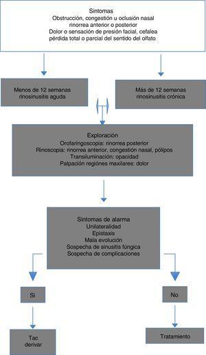 Algoritmo diagnóstico en las rinosunusitis.