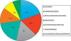 Grupos diagnósticos que engloban el 91% de toda la enfermedad atendida en el Servicio de Urgencias dermatológicas.