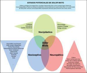 Propuesta de «descriptores» de dolor crónico para la IASP. Fuente: adaptada de Freynhagen et al.5.