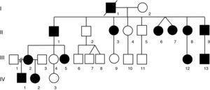 Árbol genealógico actualizado de la familia mexicana con ATS descrita originalmente por Canún et al.8. Por el tiempo transcurrido, se ha agregado una cuarta generación cuyos miembros tienen el patrón de herencia autosómico dominante.