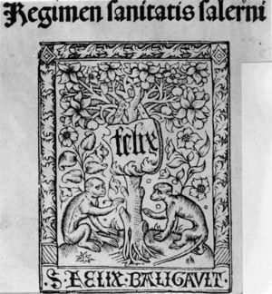 Regimen Sanitatis Salerni, poema didáctico dedicado principalmente a dieta.