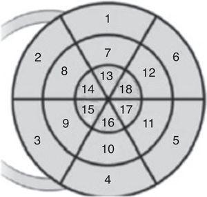 Modelo de 18 segmentos bulls eye. Segmentos correspondientes según el número que aparece en la figura: 1 basal anterior; 2 basal anteroseptal; 3 basal inferoseptal; 4 basal inferior; 5 basal inferolateral; 6 basal anterolateral; 7 medio anterior; 8 medio anteroseptal; 9 medio inferoseptal; 10 medio inferior; 11 medio inferolateral; 12 medio anterolateral; 13 apical anterior; 14 apical anteroseptal; 15 apical inferoseptal; 16 apical inferior; 17 apical inferolateral; 18 apical anterolateral. Modificada de Voigt et al.6.