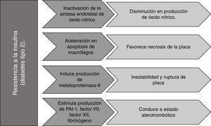 Efecto de la resistencia a la insulina sobre la formación y/o progresión de la placa aterosclerótica. PAI-1: inhibidor del activador del plasminógeno 1. Fuente: autoría propia.